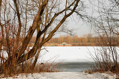 Ice fragments under thin layer of frozen river water. Stock Photography