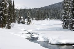 Ice free snow-bound mountain river in winter Royalty Free Stock Photography