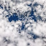 Search for the snowflake in the stack royalty free stock photography