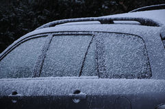 ICE FROST AND SNOW WEATHER Royalty Free Stock Photo