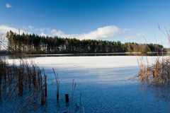 On ice of the frozen pond. A sunny day on ice of the frozen pond Stock Image