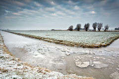 Ice on frozen river in Dutch farmland Royalty Free Stock Photos