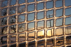 Through the Ice. Ice frozen on a snow fence, removed to capture the sun Stock Photography