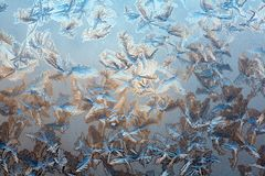 Ice on the glass Royalty Free Stock Photography