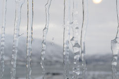 Ice on glass Royalty Free Stock Photos