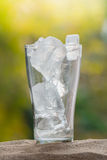 Ice in the glass Royalty Free Stock Photos