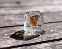 Ice glass shot Stock Photography