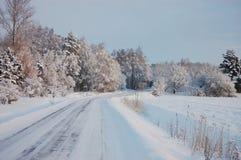 Ice-glazed road Stock Images