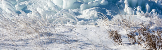 Ice and grass. Single blade of grass covered with a thick layer of emerald ice and white snow Royalty Free Stock Photo