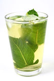 Ice green tea Stock Images