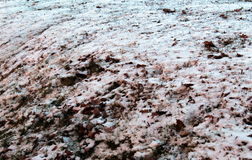 Ice on the ground. Icy snow on the ground Royalty Free Stock Photography