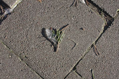 Ice heart on the ground. Royalty Free Stock Photos