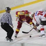 Ice hockey Royalty Free Stock Photo