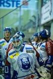 Ice hockey Royalty Free Stock Image
