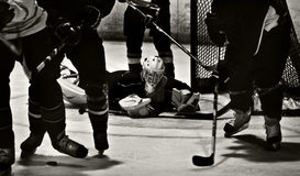 Ice Hockey Action Shot. Goalie dives to make a save and watches puck from the ice stock image