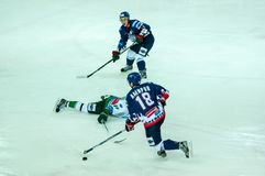 Ice hockey competitions Royalty Free Stock Photo