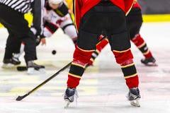 Ice hockey face-off. Ice hockey players face-off Stock Photos