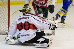 Ice Hockey Goalie Royalty Free Stock Photos