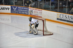Ice Hockey Goalkeeper of Clarkson University Stock Photo