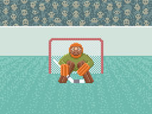 Ice Hockey Goalkeeper - Pixel Art Illustration Stock Image