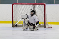 Ice hockey goaltender in front of net Royalty Free Stock Images