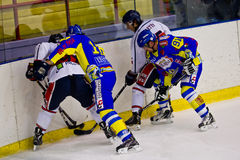 Ice Hockey Italian Premier League Royalty Free Stock Photos