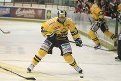 Ice hockey - Martin Rucinsky Royalty Free Stock Photos