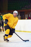 Ice hockey player in action Stock Image
