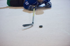 Ice hockey player in action Stock Photo