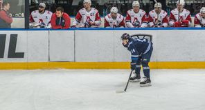 Ice hockey player in front of bench. Ice hockey player in front of the bench of the opposite team royalty free stock image