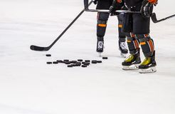 Ice hockey player on the ice royalty free stock images
