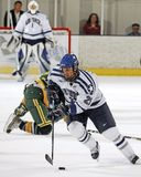 Ice Hockey, Players, Pass, Forward Stock Images