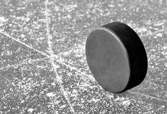 Ice hockey puck. Black hockey puck on ice rink Stock Image