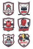 Ice hockey game sport vector icons. Ice hockey sport icons of player with stick and puck on rink, goalie in uniform, mask and helmet, winner trophy cup, glove stock illustration