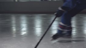 Ice hockey stick handling puck player skating skates in an arena.  stock video