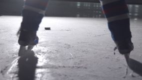 Ice hockey stick handling puck player skating skates in an arena.  stock video footage