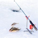 Ice hole for fishing. Fish on a frozen lake Stock Images