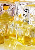 Ice honey. Honey is a sweet and viscous fluid produced by bees and other insects from the nectar of flowers. Honey is significantly sweeter than table sugar and Stock Image