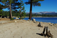 Ice House Reservoir,California Royalty Free Stock Image