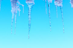 Ice icicles on blue sky background. Stock Photos