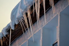 Ice icicles. Hang in the spring under a house roof Stock Images