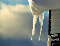 Ice icicles. Hang in the winter under a house roof Stock Images