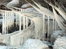 Ice icicles Stock Photo