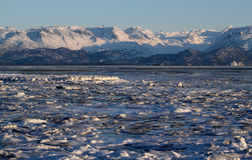 Ice in the Kachemak bay Royalty Free Stock Photography