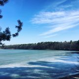 Ice on a lake and a forest. Frozen lake and woods in Europe Royalty Free Stock Images