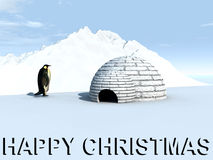 Ice Land 5. A penguin by an igloo home with a Happy Christmas Sign Stock Image