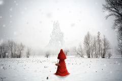 The ice land. Girl with the red cape in the bewitched forest Royalty Free Stock Image