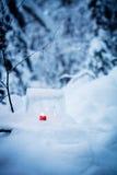Ice lantern Stock Photos