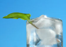 Ice and leaf Stock Photos
