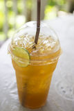 Ice lemon tea. In plastic cup Stock Image